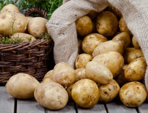 Mandelbachtal: Betrügerischer Kartoffelverkäufer wieder unterwegs