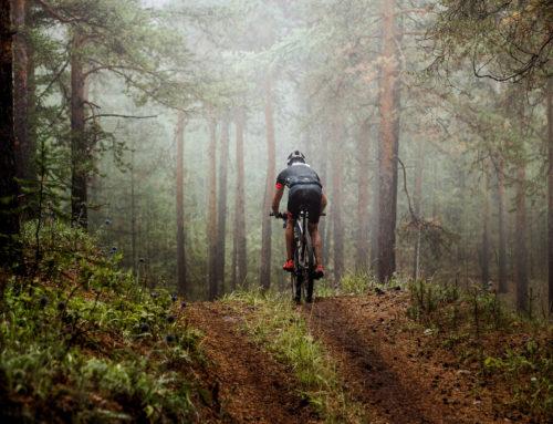 Saarland setzt auf Mountainbiking