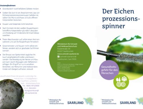 Der Eichenprozessionsspinner – Umweltministerium informiert über  Gesundheitsgefahren für den Menschen