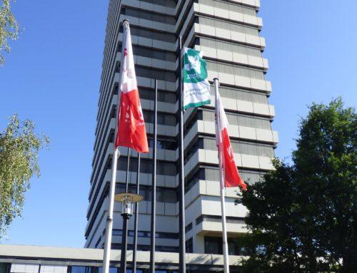 Kaiserslautern: Stadt zeigt Flagge für den Frieden