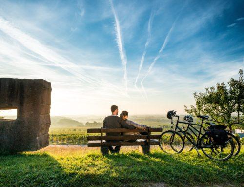 Wegweiser im Radlerparadies – Neue Radkarte Pfalz erschienen